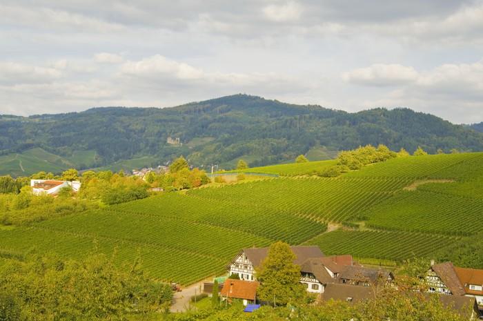 Enkelt Oberkirch