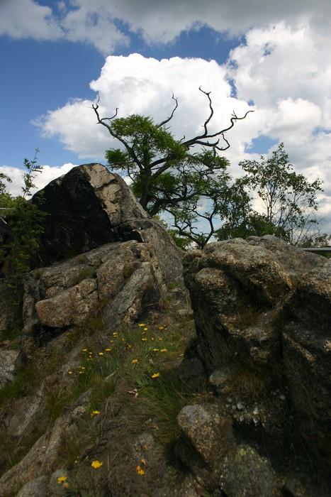 Vinylová Tapeta Harzlandschaft - Hory