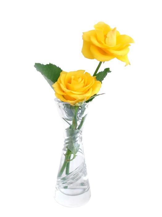 Vinylová Tapeta Kytici žlutých růží ve váze přes bílé - Květiny