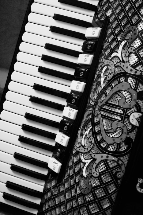 Vinylová Tapeta Akordeon - Hudba