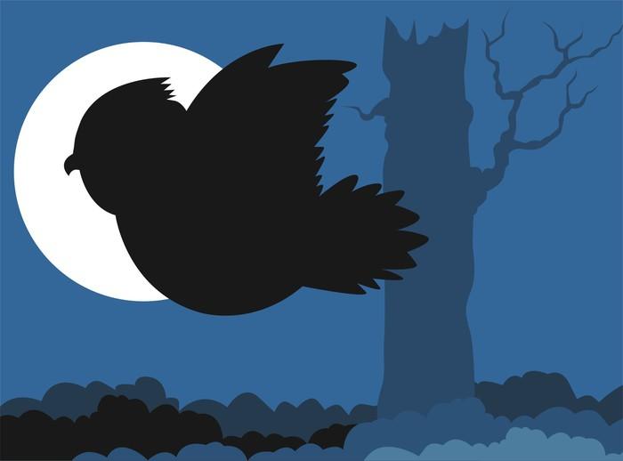 Vinylová Tapeta Ilustrace pták létání v modrém pozadí - Ptáci