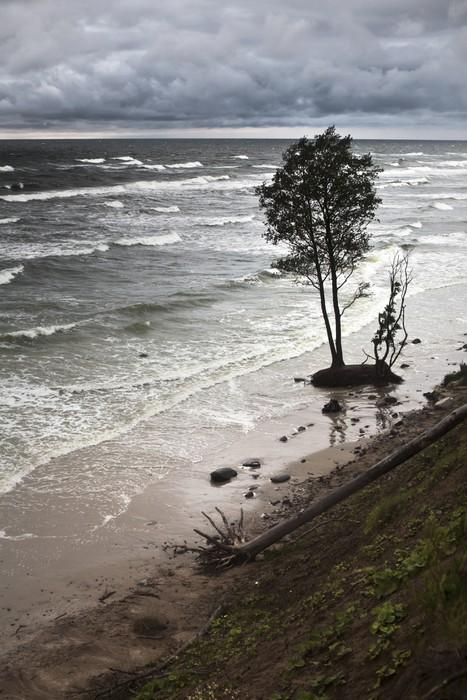 Vinylová Tapeta Eroze pobřeží Baltského moře v důsledku bouří a změny klimatu - Přírodní katastrofy