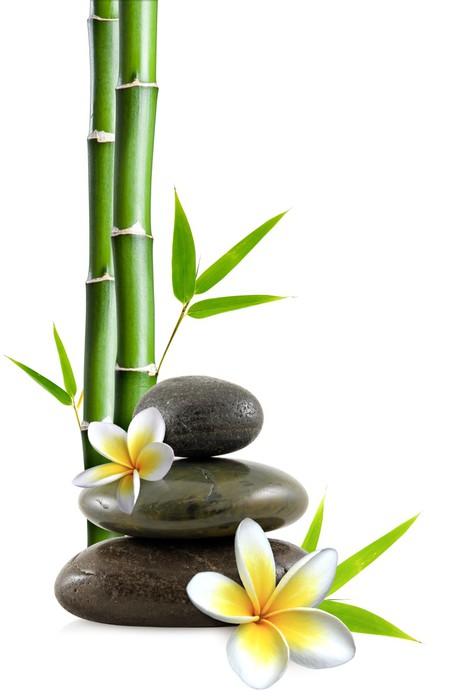 fotomural estndar flores frangipani piedras zen y bamb estilos - Piedras Zen