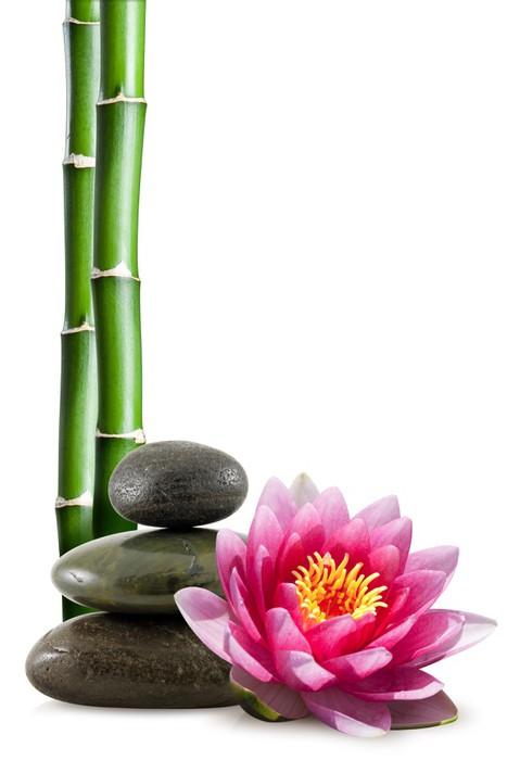 Tableau sur Toile Fleur de lotus, galets et bambou - Sticker mural