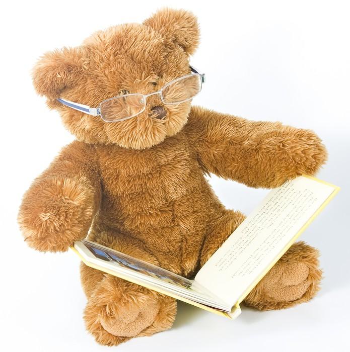 Vinylová Tapeta Medvídek čtení knihy - Hry