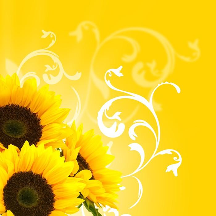 Vinylová Tapeta Květinovým vzorem a slunečnice slunce a květinová výzdoba hranice - Témata