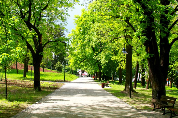 Vinylová Tapeta Klidném parku na jaře - Město