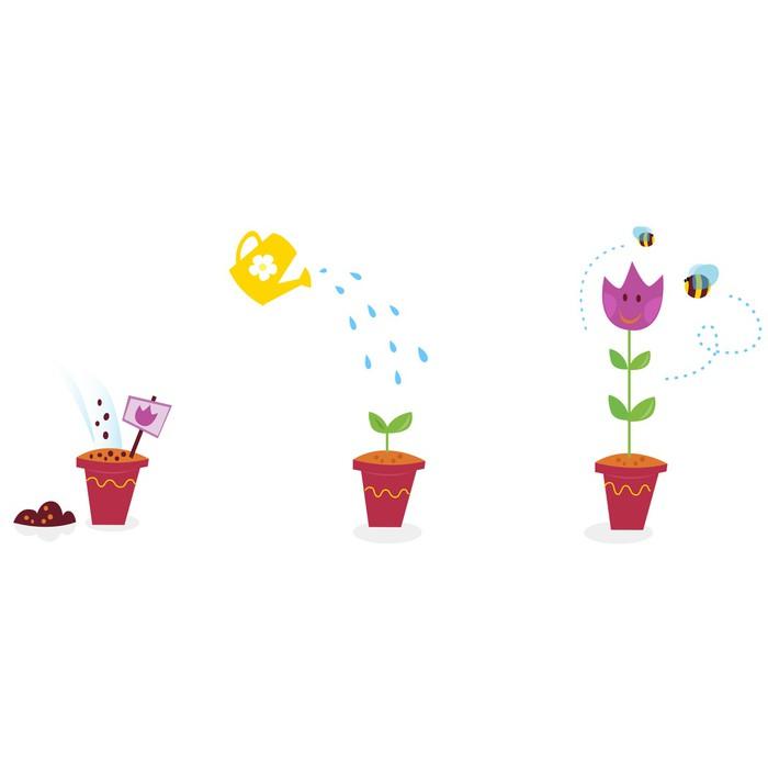 Vinylová Tapeta Zahradní fáze růstu květiny - Tulipán. Vektorové ilustrace - Květiny