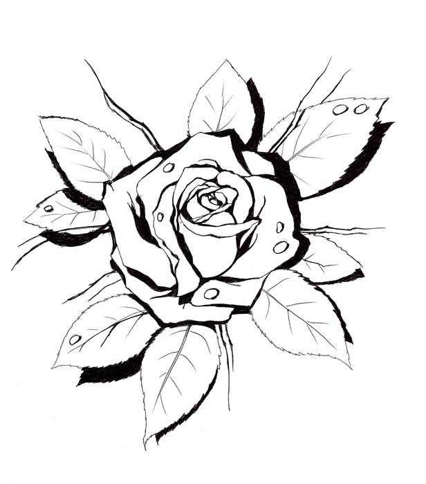 Vinylová Tapeta Rose shape.My vlastní umělecká díla. - Umění a tvorba
