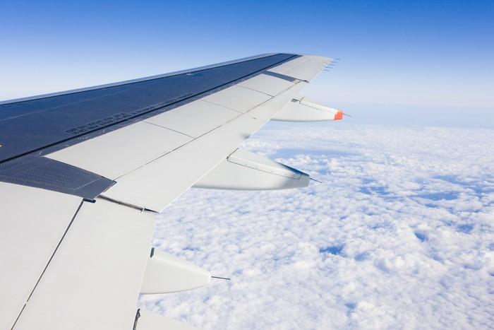 Papel de Parede em Vinil air transport - plane's wing - Ar