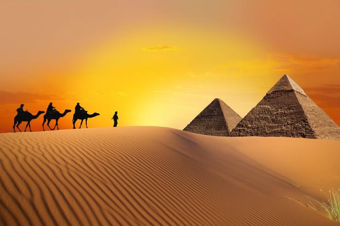 Papier Peint Pyramide Le Chameau Et Le Coucher Du Soleil