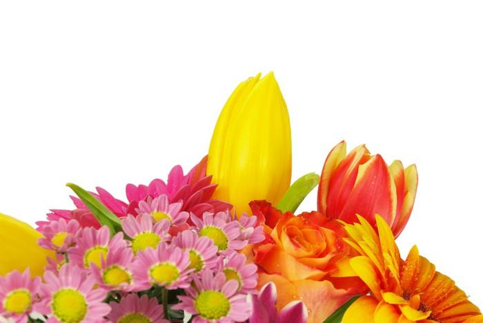 Vinylová Tapeta Kytice jarní květiny na bílém pozadí - Květiny