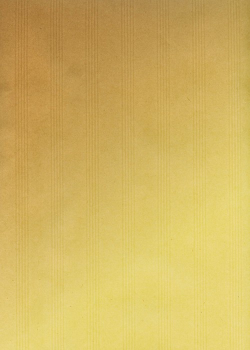 Vinylová fototapeta Fond papier Kraft - Vinylová fototapeta