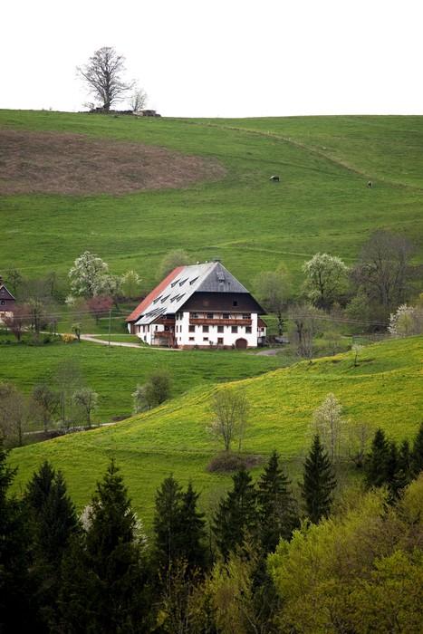 Vinylová Tapeta Bauernhof - Hory