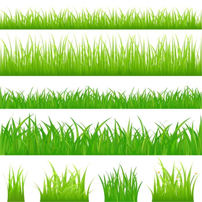 Carta da parati 4 sfondi di erba verde e 4 ciuffi d 39 erba for Carta da parati vinile