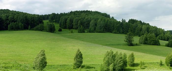 Vinylová Tapeta Krajina - Zemědělství