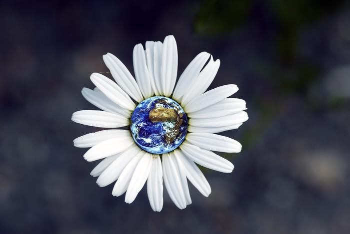 Vinylová Tapeta Vlastní planeta - Ekologie