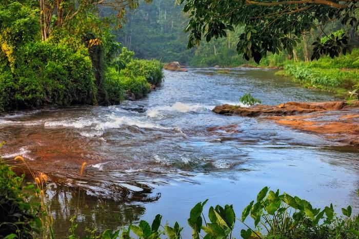 Vinylová Tapeta Tropical river - Asie