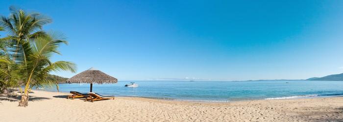Vinylová Tapeta Tropické pláže panorama - Palmy
