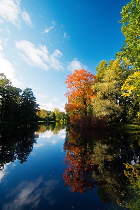 Vinylová Tapeta Podzimní stromy odráží v malém rybníku - Roční období
