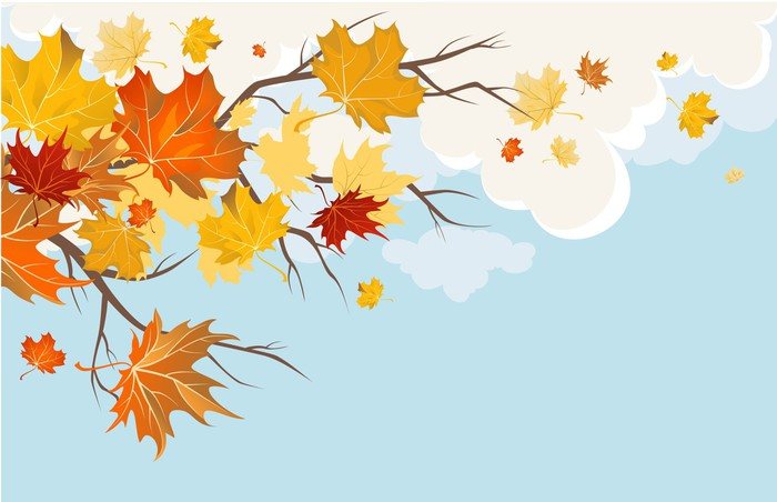 Vinylová fototapeta Autumn leaves - Vinylová fototapeta