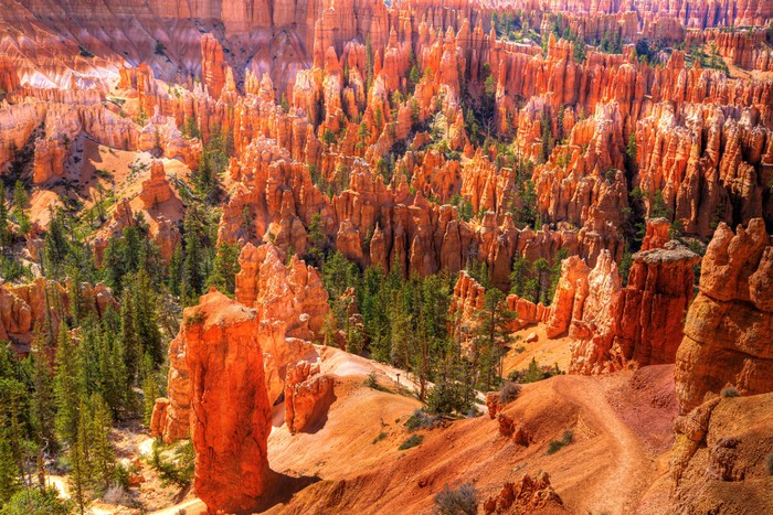 Vinylová Tapeta Bryce Canyon - Amerika