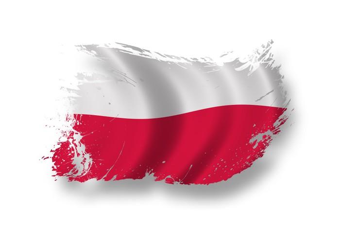fototapeta flaga polski � pixers174 � Żyjemy by zmienia�