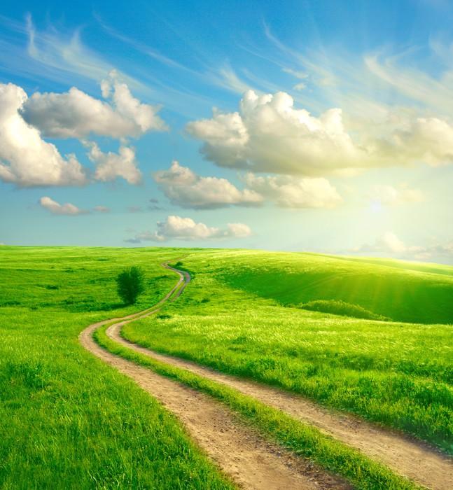 tableau sur toile paysage d 39 t avec l 39 herbe verte la route et les nuages pixers nous. Black Bedroom Furniture Sets. Home Design Ideas