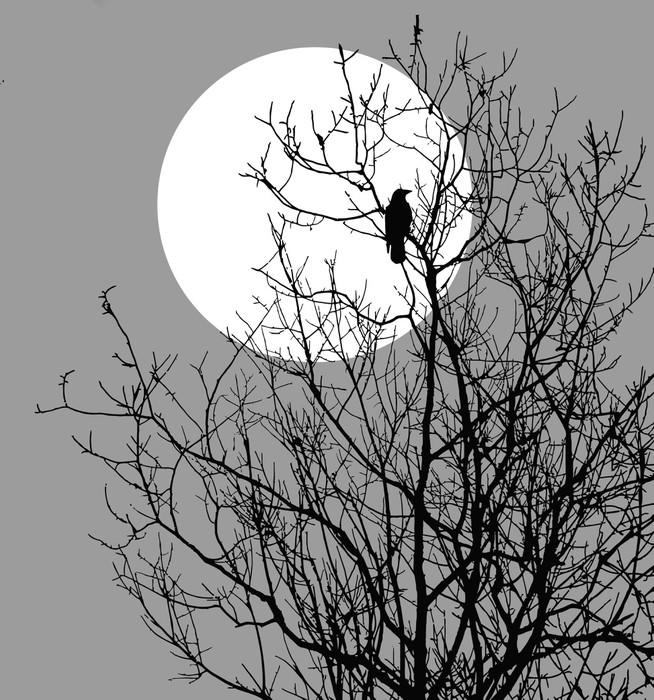 papier peint illustration corbeaux assis sur l 39 arbre. Black Bedroom Furniture Sets. Home Design Ideas