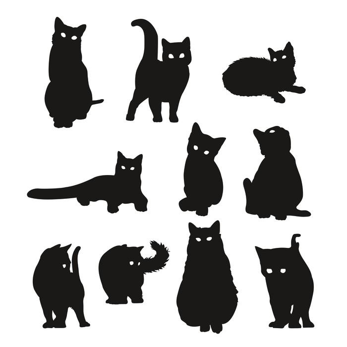 Vinilo Pixerstick Las sombras de los gatos • Pixers® - Vivimos para ...