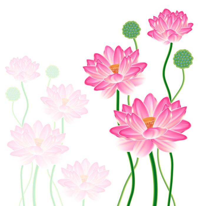 Papel pintado lotus oriental realista pixers vivimos for Papel pintado oriental