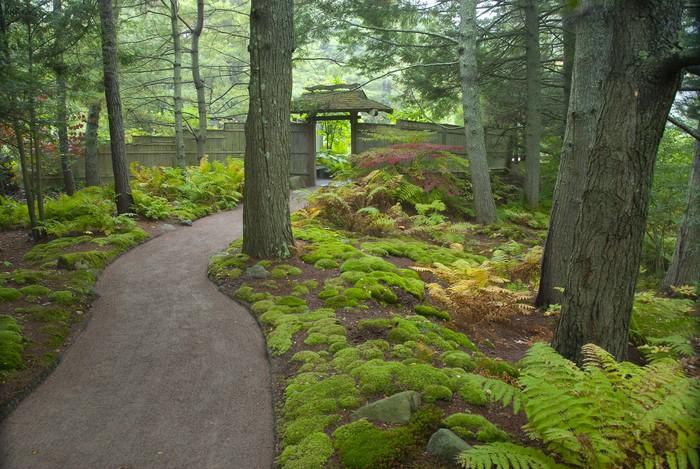 Adesivo ingresso giardino giapponese pixers viviamo - Ingresso giardino ...