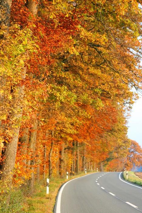 Vinylová Tapeta Podzimní krajina - Roční období