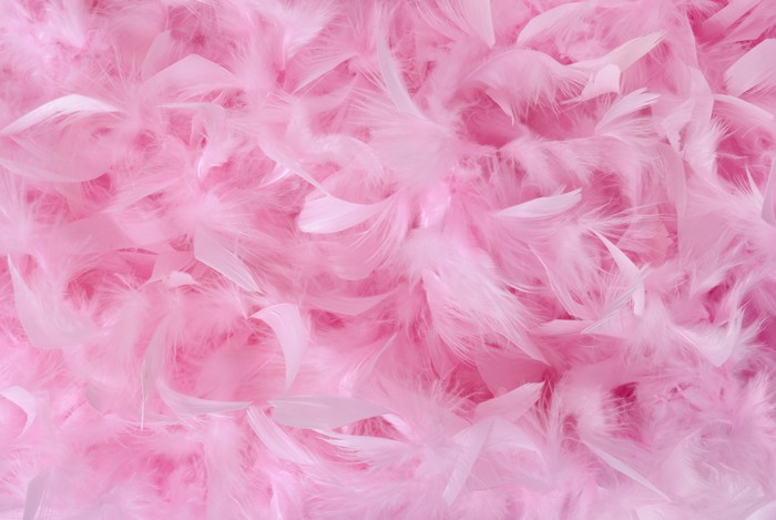 Small Pink Feathers In Pile Texture Wall Mural Pixers