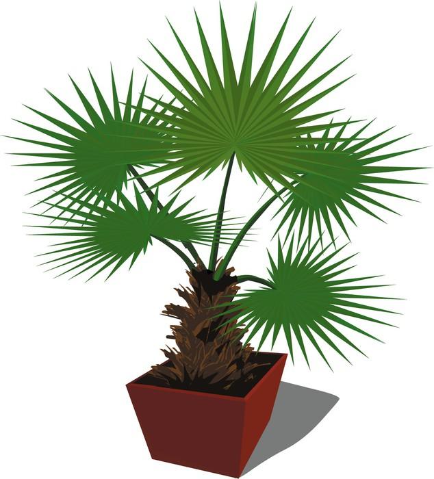 papier peint vecteur palmier fleur plante de plus en plus dans une bo te pixers nous vivons. Black Bedroom Furniture Sets. Home Design Ideas