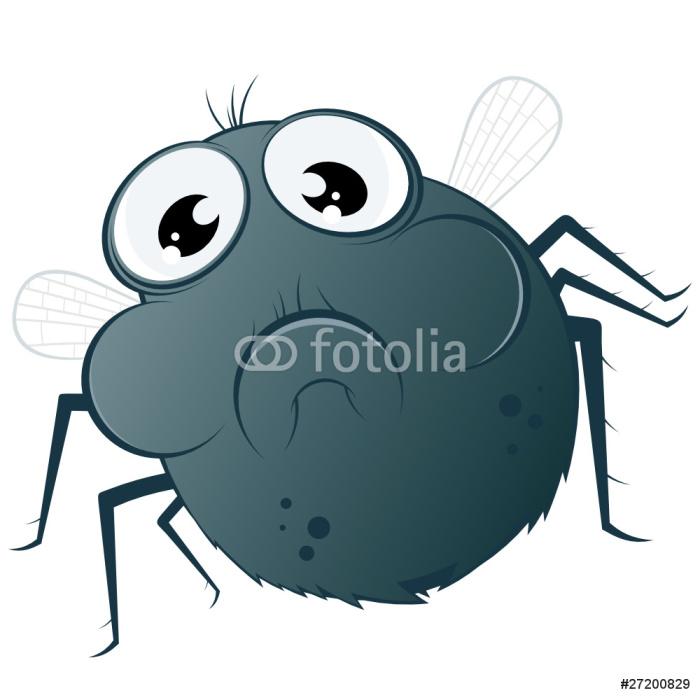 Vinylová Tapeta Létat hmyz kreslený legrační - Ostatní Ostatní