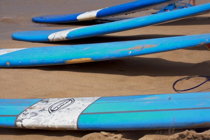 Vinylová fototapeta Čtyři surfy - Vinylová fototapeta