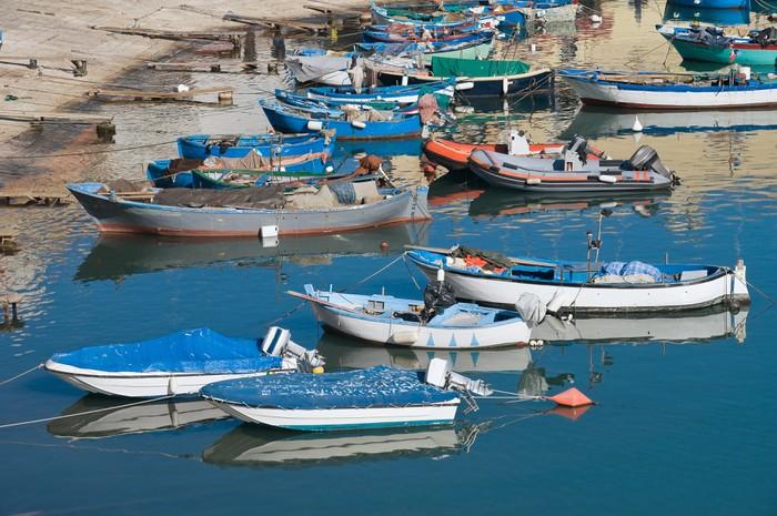 Vinyl Fotobehang Boten afgemeerd aan de toeristische haven van Bisceglie. Apulië. - Vakantie