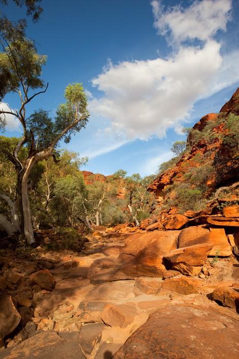 Vinylová Tapeta Stezka v australské poušti - Témata