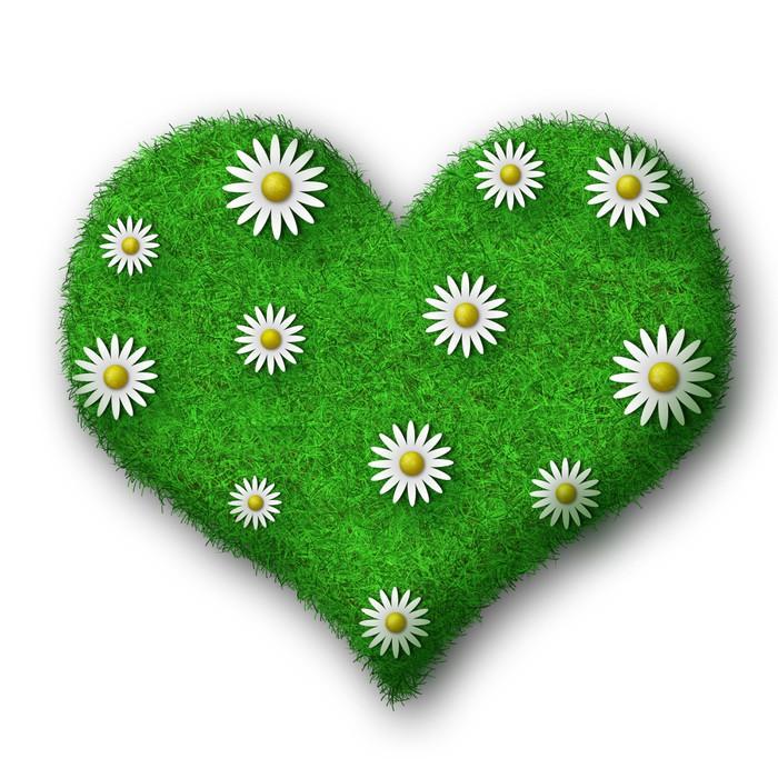 Vinylová fototapeta Сердце из травы с белыми ромашками - Vinylová fototapeta