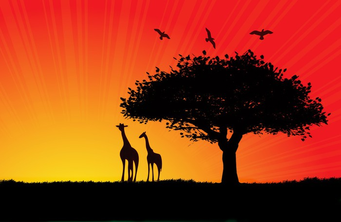 Vinylová Tapeta Africké slunce ilustrace s dvěma žirafy - Témata