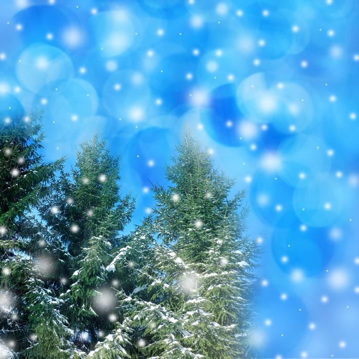 Vinylová Tapeta Zimní Vánoční pozadí - Stromy