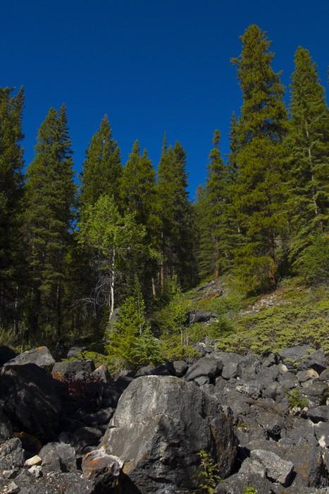Vinylová Tapeta Skalní Slide v národním parku Banff - Hory