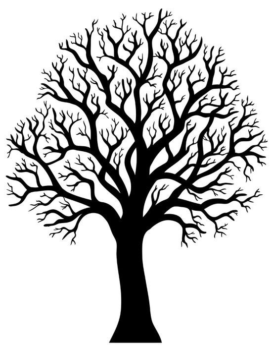 papier peint silhouette dun arbre sans feuille 2 - Arbre Sans Feuille