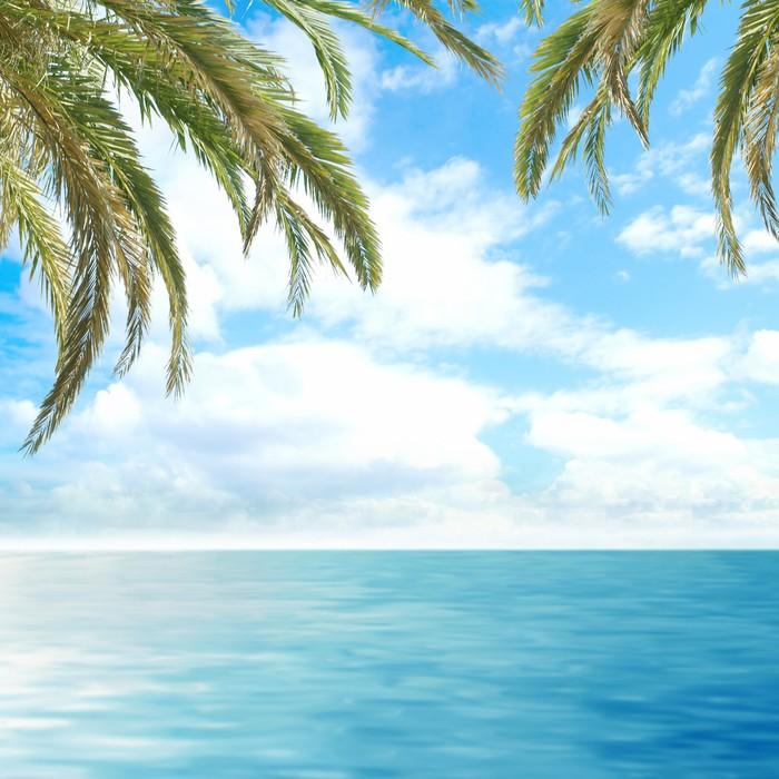 Vinylová Tapeta Romantické tropické výhled na hluboké modré moře s palmami - Stromy