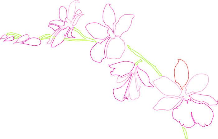 Vinylová Tapeta Orchidee - Rostliny