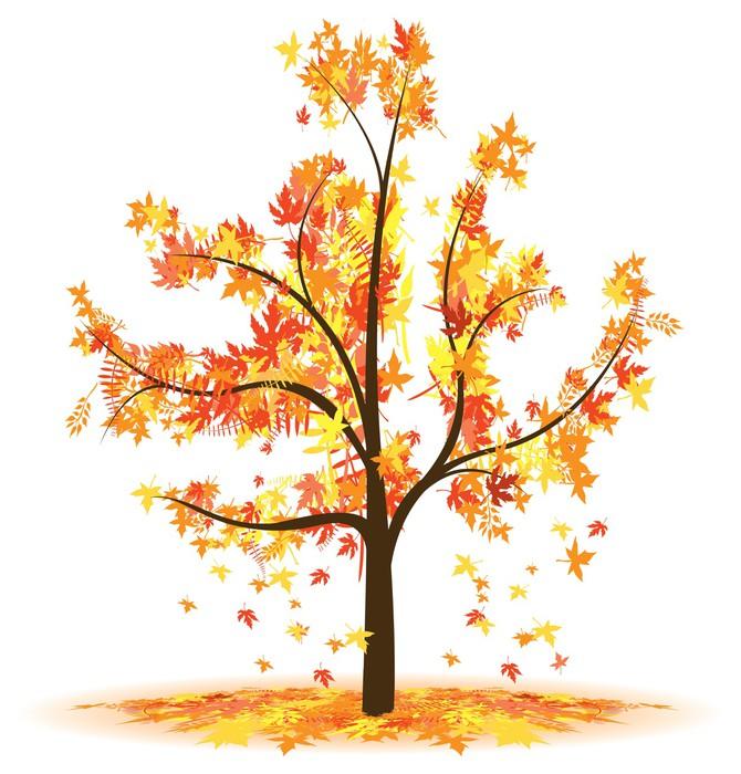 Papier peint motifs arbre automne feuilles qui tombent - Papier peint motif arbres ...
