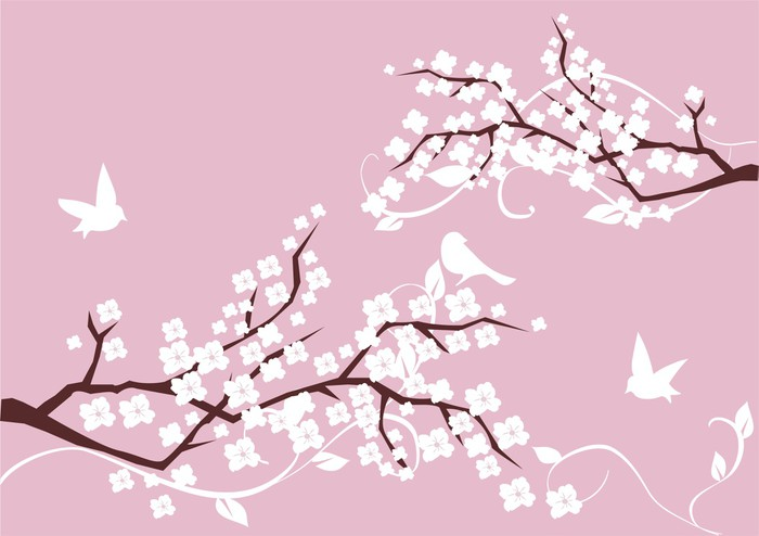 Vinylová Tapeta Květ větve s bílými květy a ptáci - Imaginární zvířata