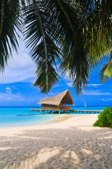 Vinylová Tapeta Potápěčský klub na tropickém ostrově - Prázdniny