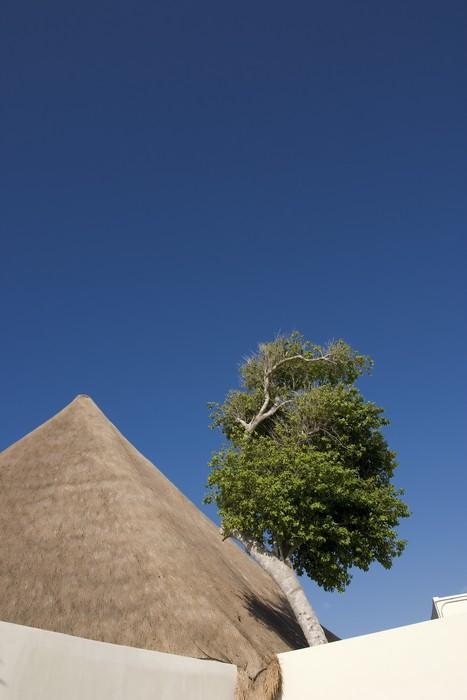 Vinylová Tapeta Tropické nebe - Stromy